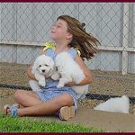 Girl holding a shiloh coton puppy on each hand