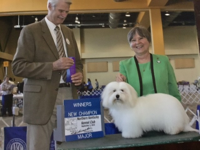 Northern Kentucky Dog Contest, Shiloh Coton Winner