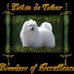 Coton de Tulear, Breeders of Excellence