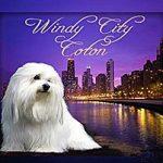 Windy City Coton